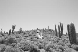 pkl-fotografia-wedding-photography-fotografia-bodas-bolivia-salardeuyuni-36-%e2%80%a8%e2%80%a8%e2%80%a8