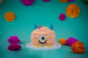 Pkl-fotografia-baby photography-fotografia bebes-bolivia-cakesmash-ingrid-04