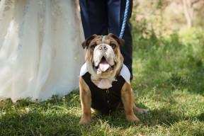 Pkl-fotografia-wedding photography-fotografia bodas-bolivia-RYC-087