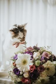 Pkl-fotografia-wedding photography-fotografia bodas-bolivia-DyN-11