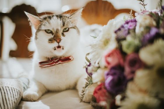 Pkl-fotografia-wedding photography-fotografia bodas-bolivia-DyN-12