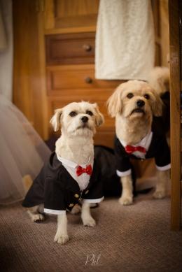 Pkl-fotografia-wedding photography-fotografia bodas-bolivia-tyj-13